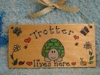 BEWARE OF THE TORTOISE WOODEN ROOM TABLE  /VIVARIUM PERSONALISED SIGN PLAQUE HANDMADE OOAK